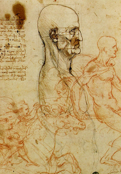 417px-Leonardo,_Männerkopf-Studie