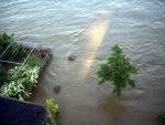 hochwasser-meissen-elbe-flut-blick-vom-toma-balkon-05-06-2013